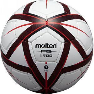 Image de FG1700 Ballons d'entraînement SENIOR et Junior Molten T 5