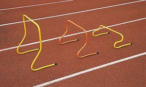 Afbeelding van  Kantelbare snelheidsheggen 20 cm