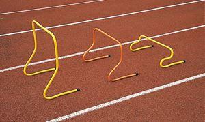 Afbeelding van  Kantelbare snelheidsheggen van 40 cm